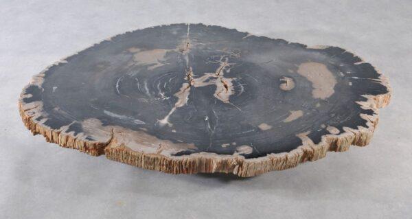 Couchtisch versteinertes Holz 36366
