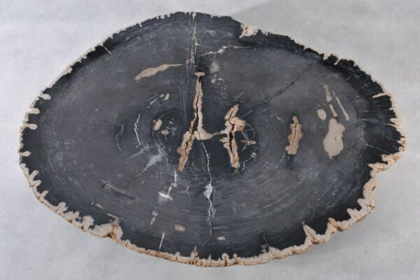 Couchtisch versteinertes Holz 36370