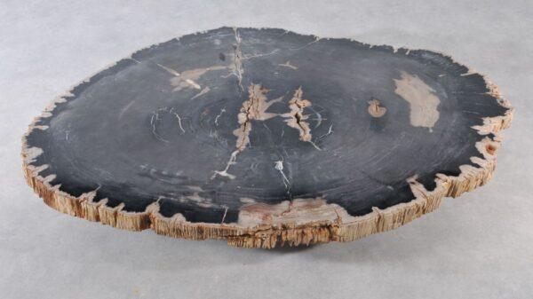 Couchtisch versteinertes Holz 36371
