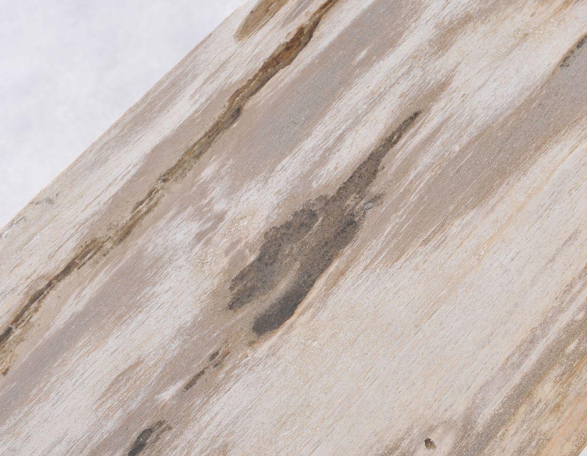 Konsole versteinertes Holz 36117