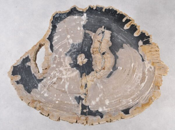 Mesa de centro madera petrificada 36145