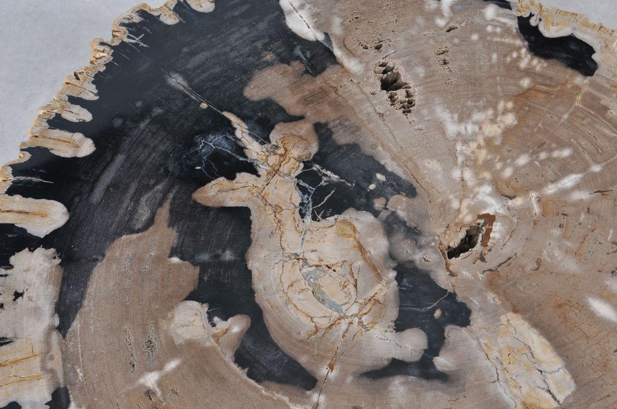 Mesa de centro madera petrificada 36148