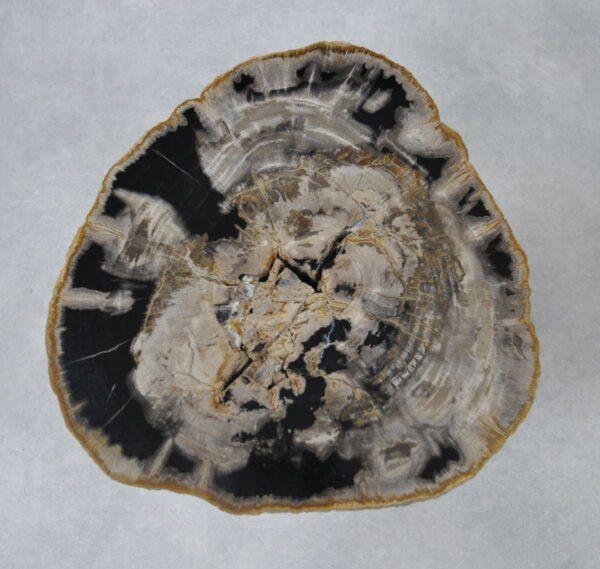 Mesa de centro madera petrificada 36227