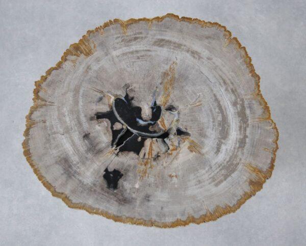 Mesa de centro madera petrificada 36230