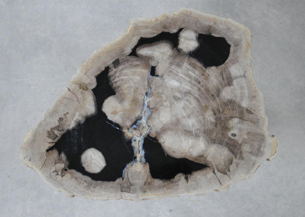 Mesa de centro madera petrificada 36237