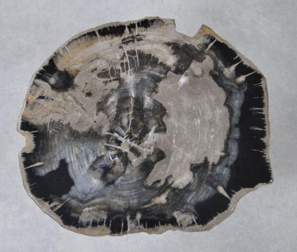 Mesa de centro madera petrificada 36244