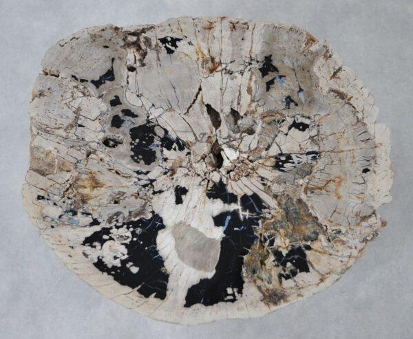 Mesa de centro madera petrificada 36289