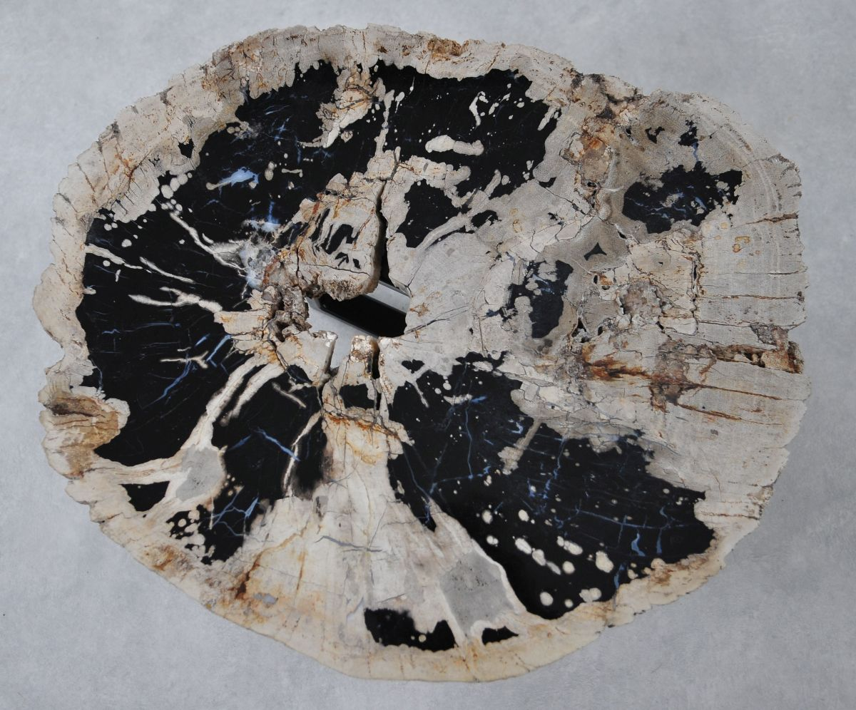 Mesa de centro madera petrificada 36299