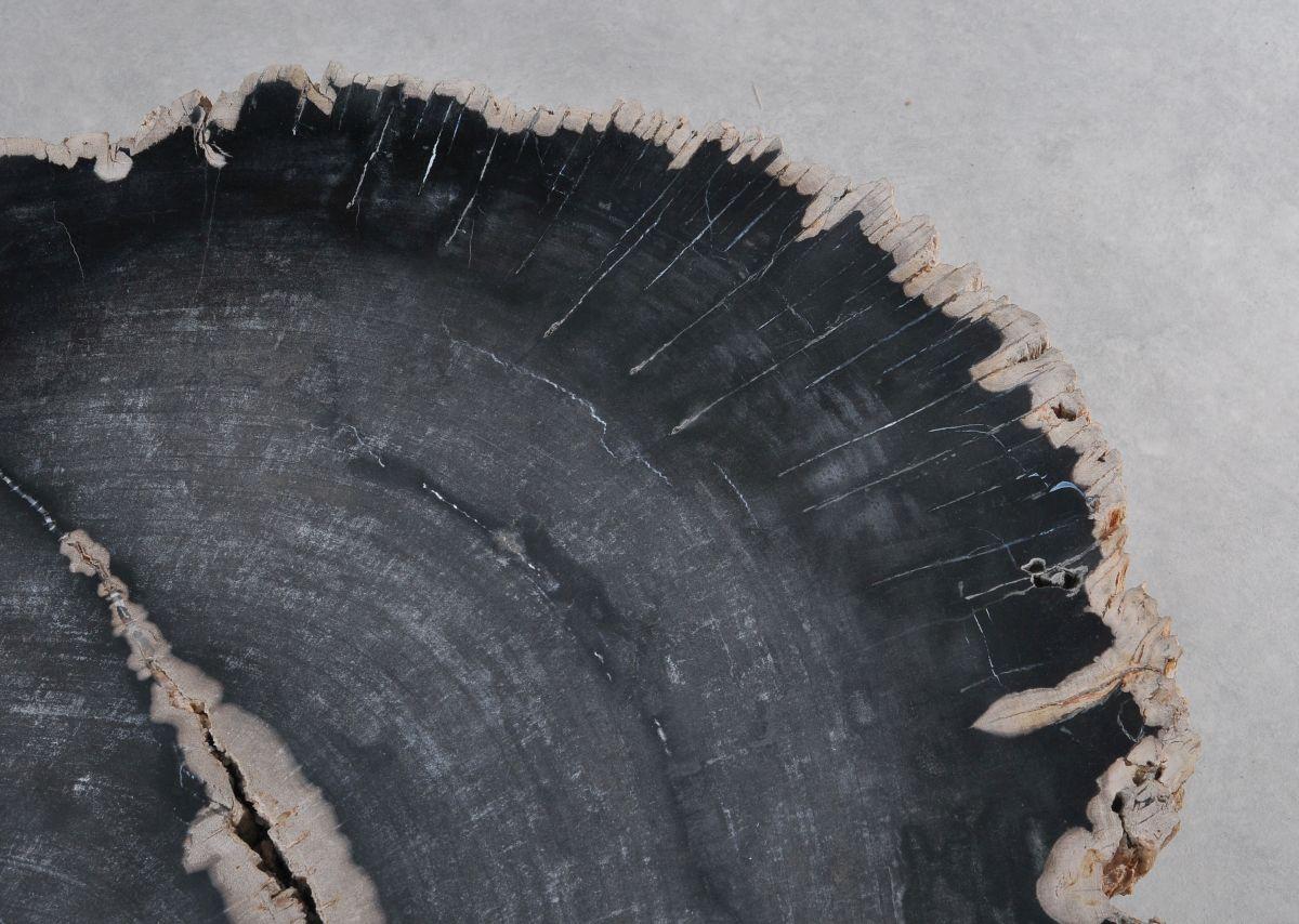 Mesa de centro madera petrificada 36367
