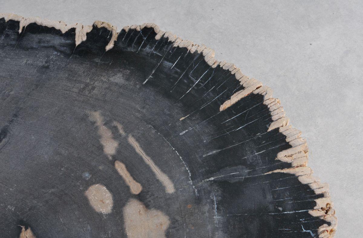 Mesa de centro madera petrificada 36370