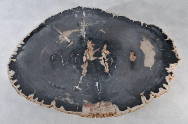Mesa de centro madera petrificada 36371