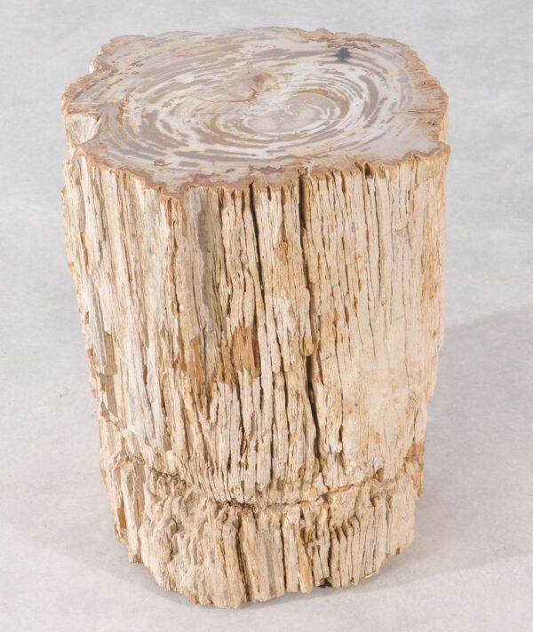 Mesilla madera petrificada 36002