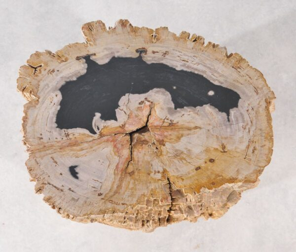 Mesilla madera petrificada 36003