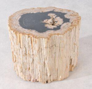 Mesilla madera petrificada 36005
