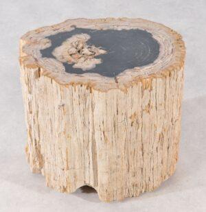 Mesilla madera petrificada 36009