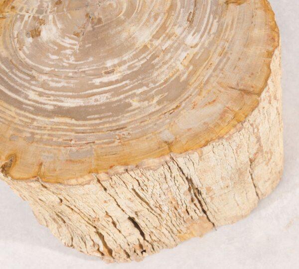 Mesilla madera petrificada 36011