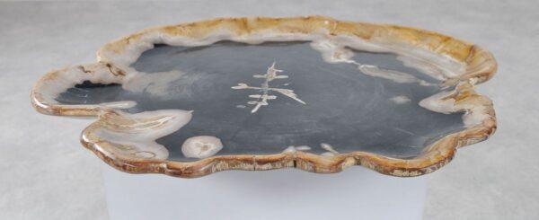 Plate petrified wood 36028