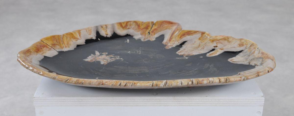 Plate petrified wood 36049b