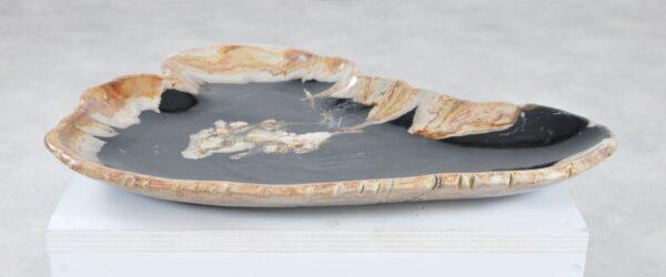 Plate petrified wood 36049n
