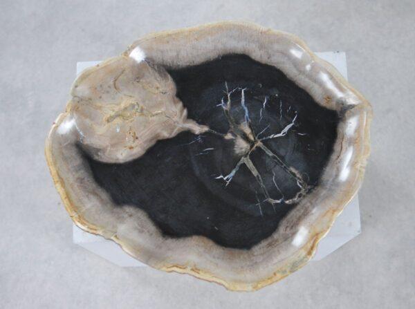 Plate petrified wood 36050a