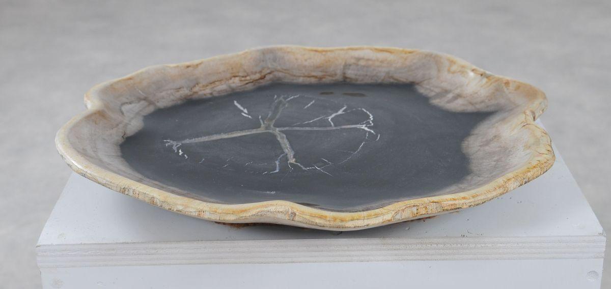 Plate petrified wood 36050h