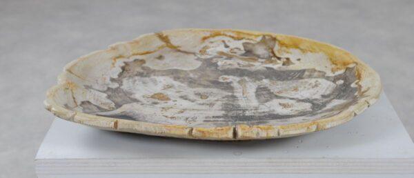 Plate petrified wood 36050j