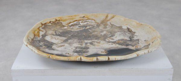 Plate petrified wood 36050k