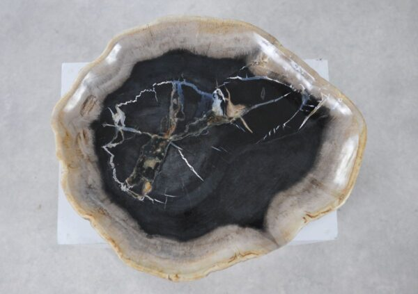 Plate petrified wood 36050l