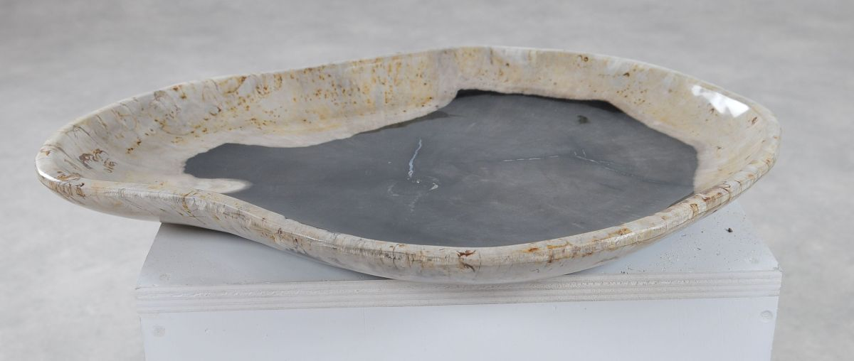 Plate petrified wood 36051a