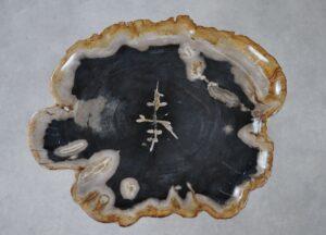 Plato madera petrificada 36028