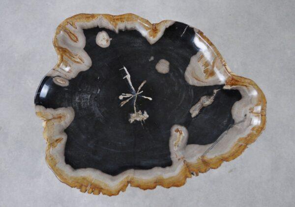 Plato madera petrificada 36042