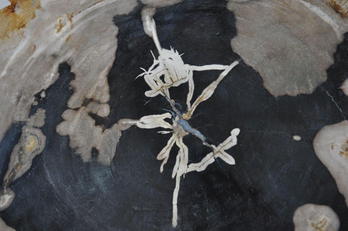 Plato madera petrificada 36046