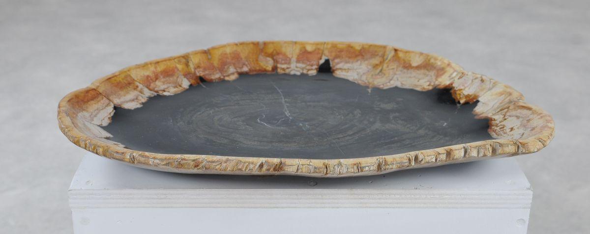 Plato madera petrificada 36049a