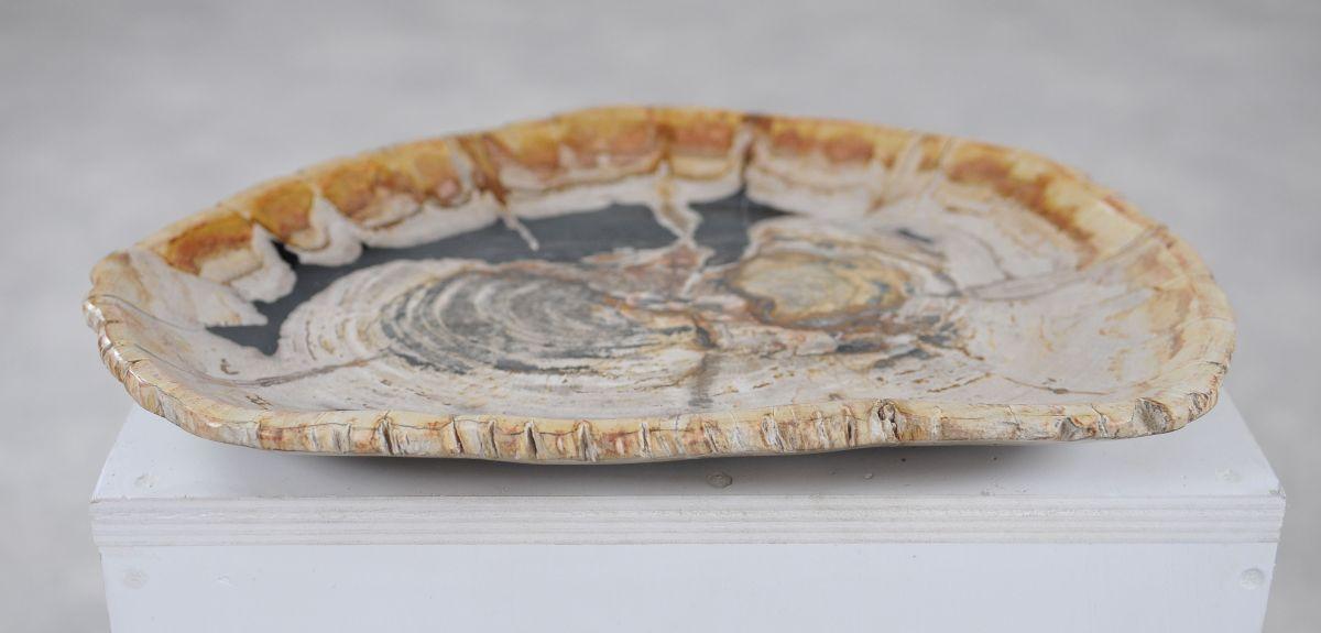 Plato madera petrificada 36049g