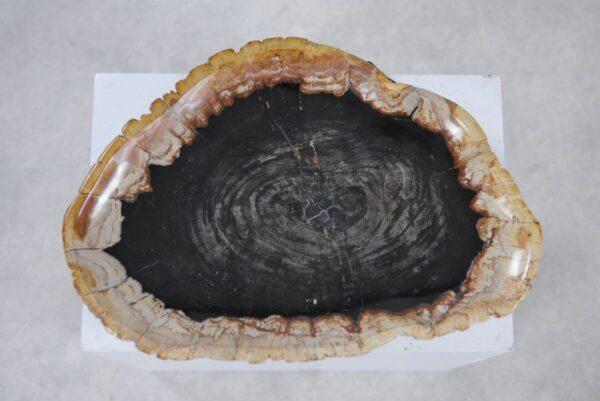 Plato madera petrificada 36049h