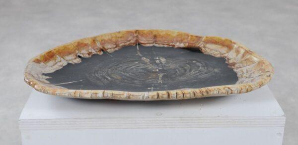 Plato madera petrificada 36049j