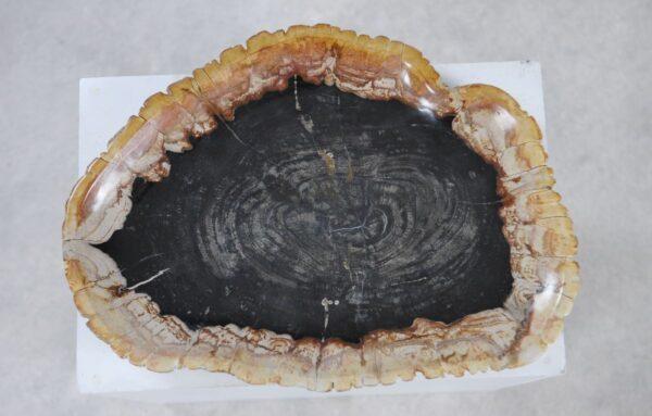 Plato madera petrificada 36049l