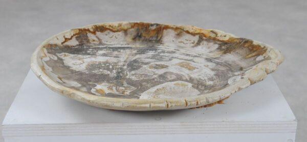 Plato madera petrificada 36050i