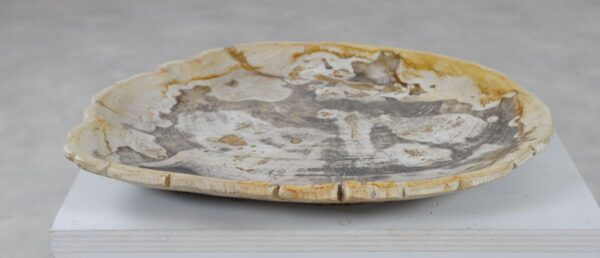 Plato madera petrificada 36050j