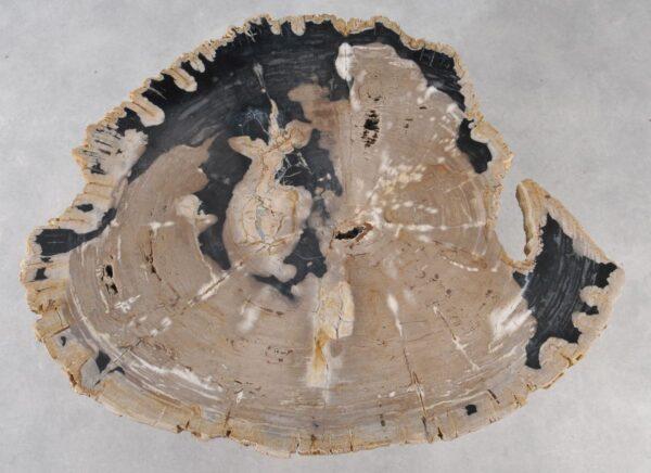 Salontafel versteend hout 36148