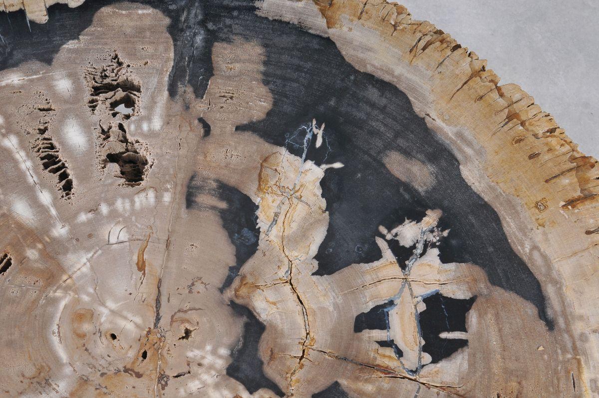Salontafel versteend hout 36149