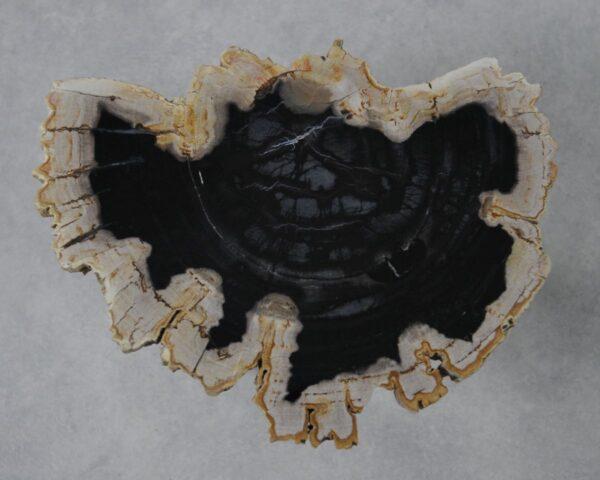 Salontafel versteend hout 36161