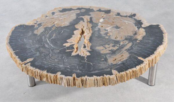 Salontafel versteend hout 36179