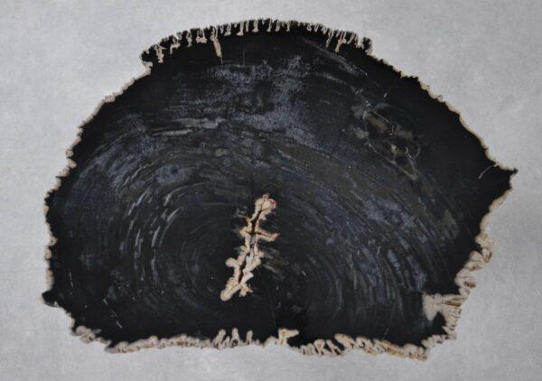 Salontafel versteend hout 36191