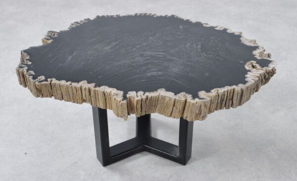 Salontafel versteend hout 36205