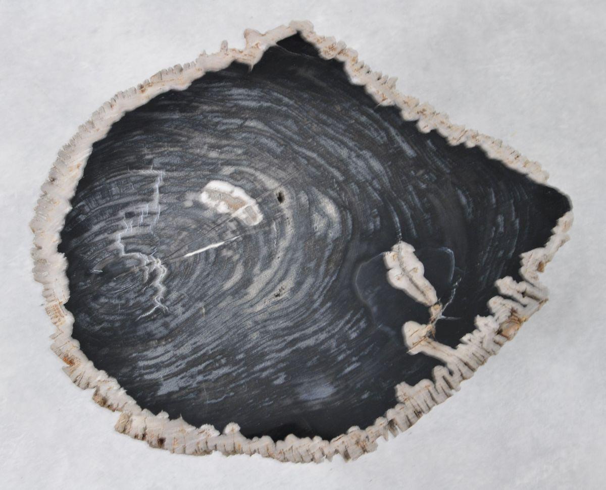 Salontafel versteend hout 36209