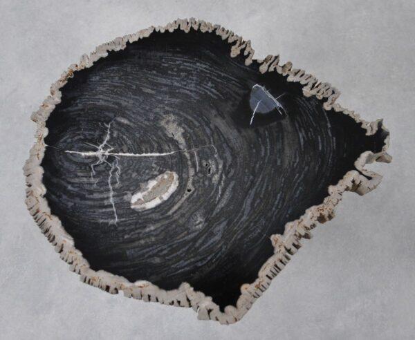 Salontafel versteend hout 36212
