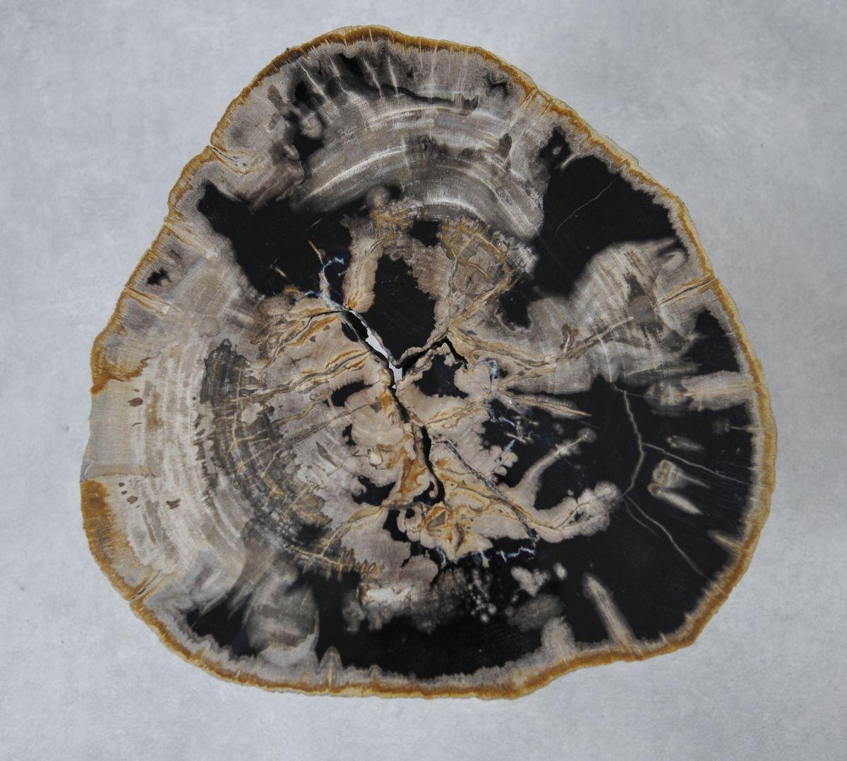 Salontafel versteend hout 36227