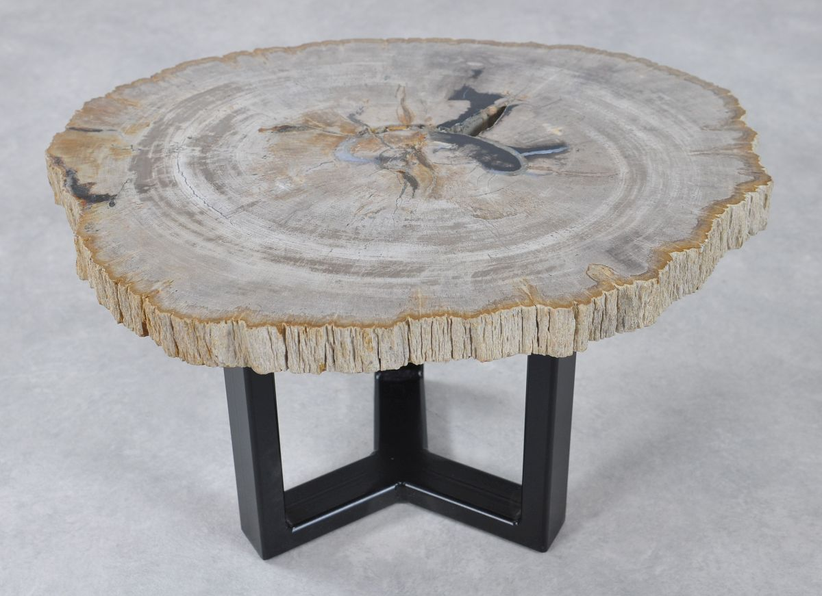 Salontafel versteend hout 36229