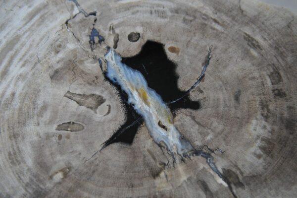 Salontafel versteend hout 36234